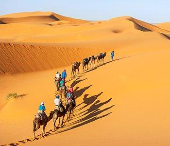 8 Days Experience Morocco + Desert Safari & Moroccan Folklore