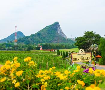 5D Thailand Classic