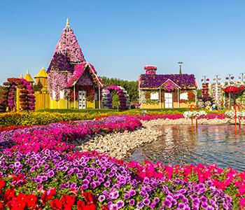 5D Experience Dubai + IMG World Theme Park & Miracle Garden