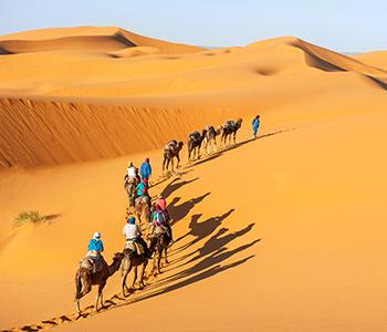 8D Experience Morocco + Desert Safari & Moroccan Folklore