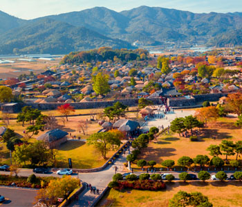 7D Korea Jeju + Ecoland & Everland
