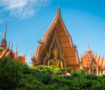 6D Thailand + Suphattra Land + Huahin