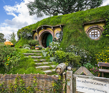 9D EXPERIENCE NEW ZEALAND + HOBBITON MOVIE SET